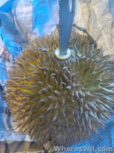 Opening-A-Durian-1