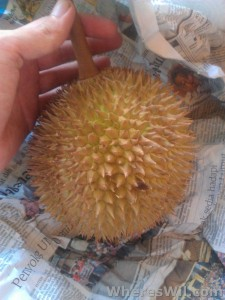 Whole-Durian