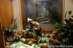 Kuching-Cat-Museum