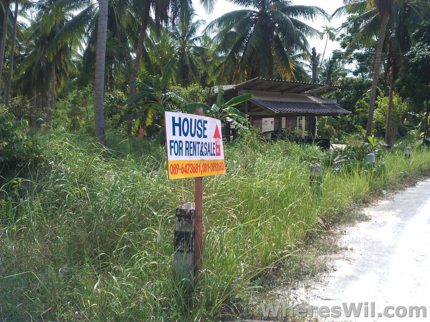 For-Rent-Sign-Koh-Phangan